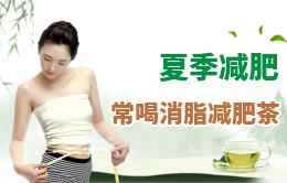 夏季减肥 常喝消脂减肥茶
